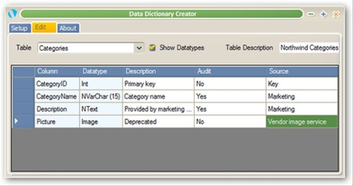 Database Dictionary Entry Form