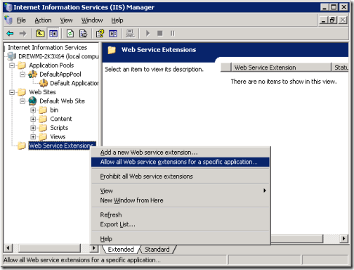 iis6-allowing-extensions